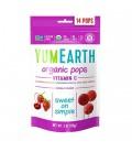 Ekologiški įvairių skonių ledinukai su vitaminu C YumEarth